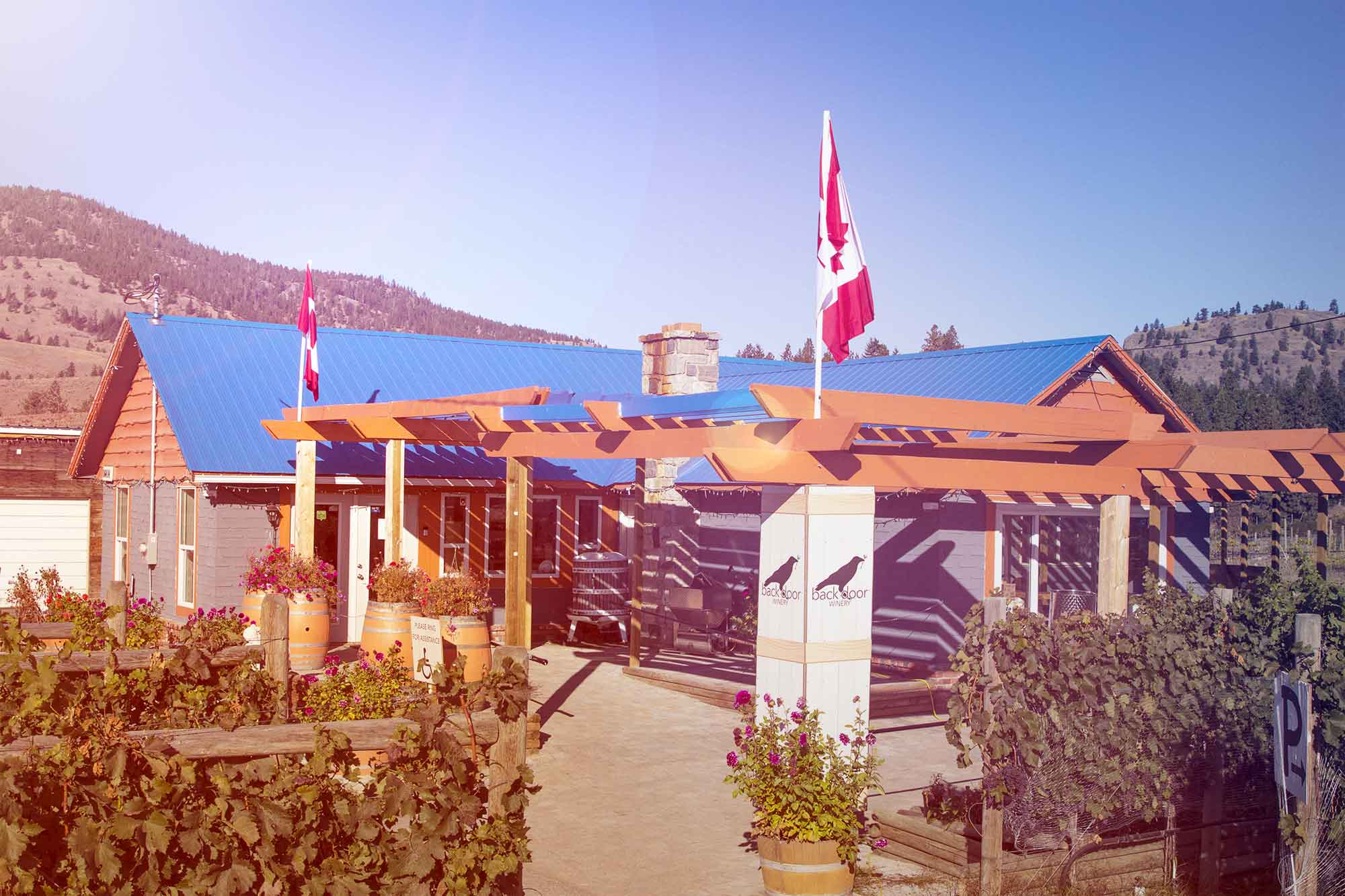Back Door Winery in Summerland BC | Giving back to the Community
